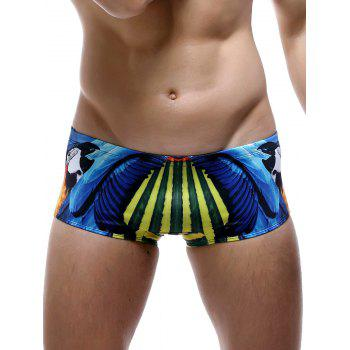 3D Parrot Graphic Print Swimming Trunks - BLUE BLUE