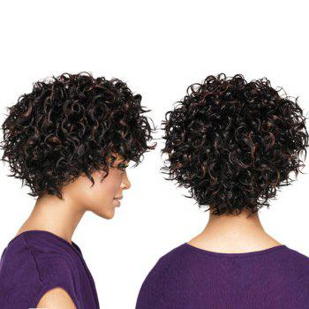 Short Shaggy Highlight Colormix Layered Curly Synthetic Wig