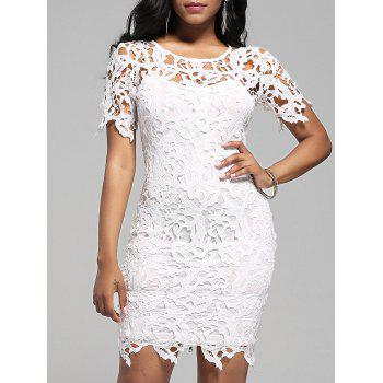Lace Cutwork Pencil Dress with Cami Dress