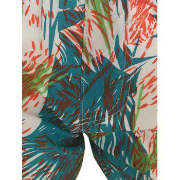 Dolphin Swim Shorts - M M