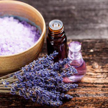 10ml Premium Therapeutic Natural Lavender Essential Oil - PURPLE
