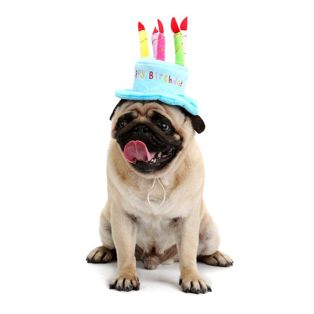 2018 candle cake shape pet dog birthday hat sky blue in pet supplies online store best shape. Black Bedroom Furniture Sets. Home Design Ideas