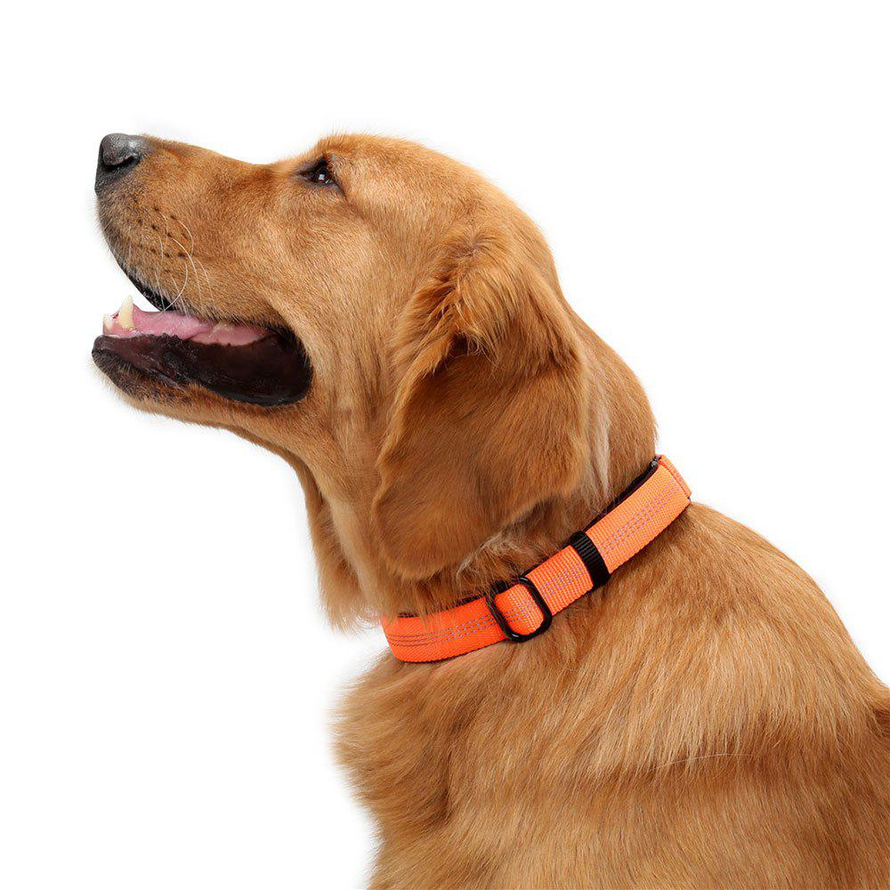 Nylon Reflective Webbing Adjustable Dog Collar - FLUORESCENT ORANGE