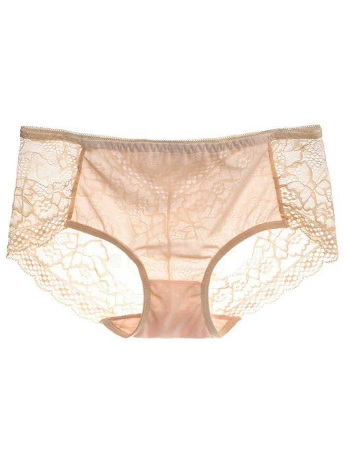Mesh Lace Panties - COMPLEXION ONE SIZE