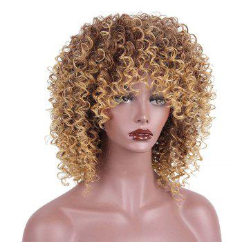 Medium Side Fringe Shaggy Colormix Afro Kinky Curly Synthetic Wig - COLORMIX