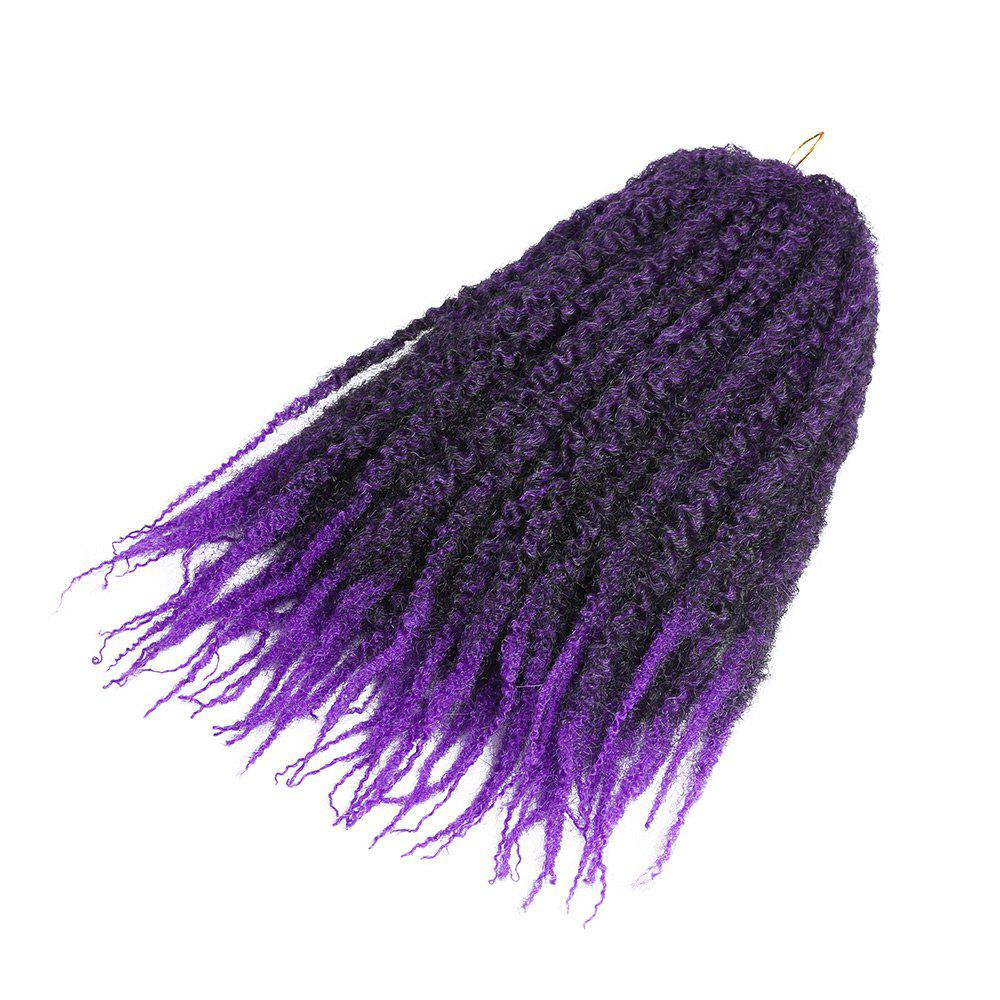 Long Bouffant Afro Kinky Curly Braids Synthetic Hair Weave - Pourpre