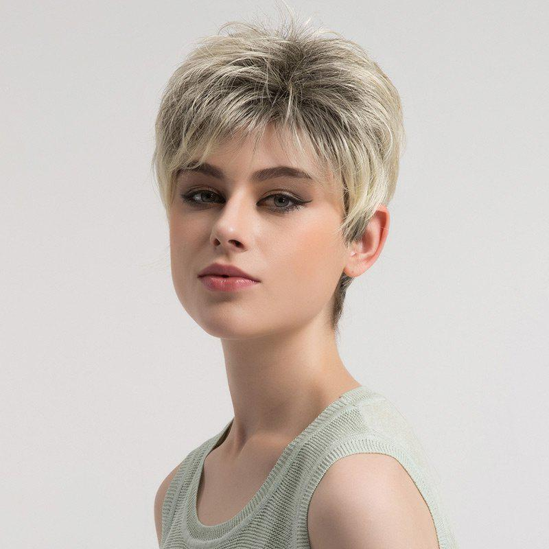 Short Layered Fluffy Colormix Straight Synthetic Wig - COLORMIX