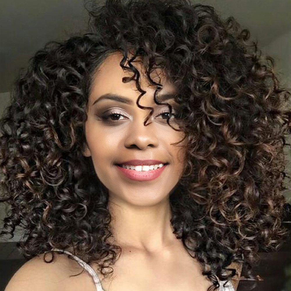 Medium Side Bang Fluffy Afro Curly Colormix Synthetic Wig