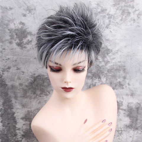 Short Side Bang Colormix Layered Shaggy Straight Synthetic Wig - COLORMIX