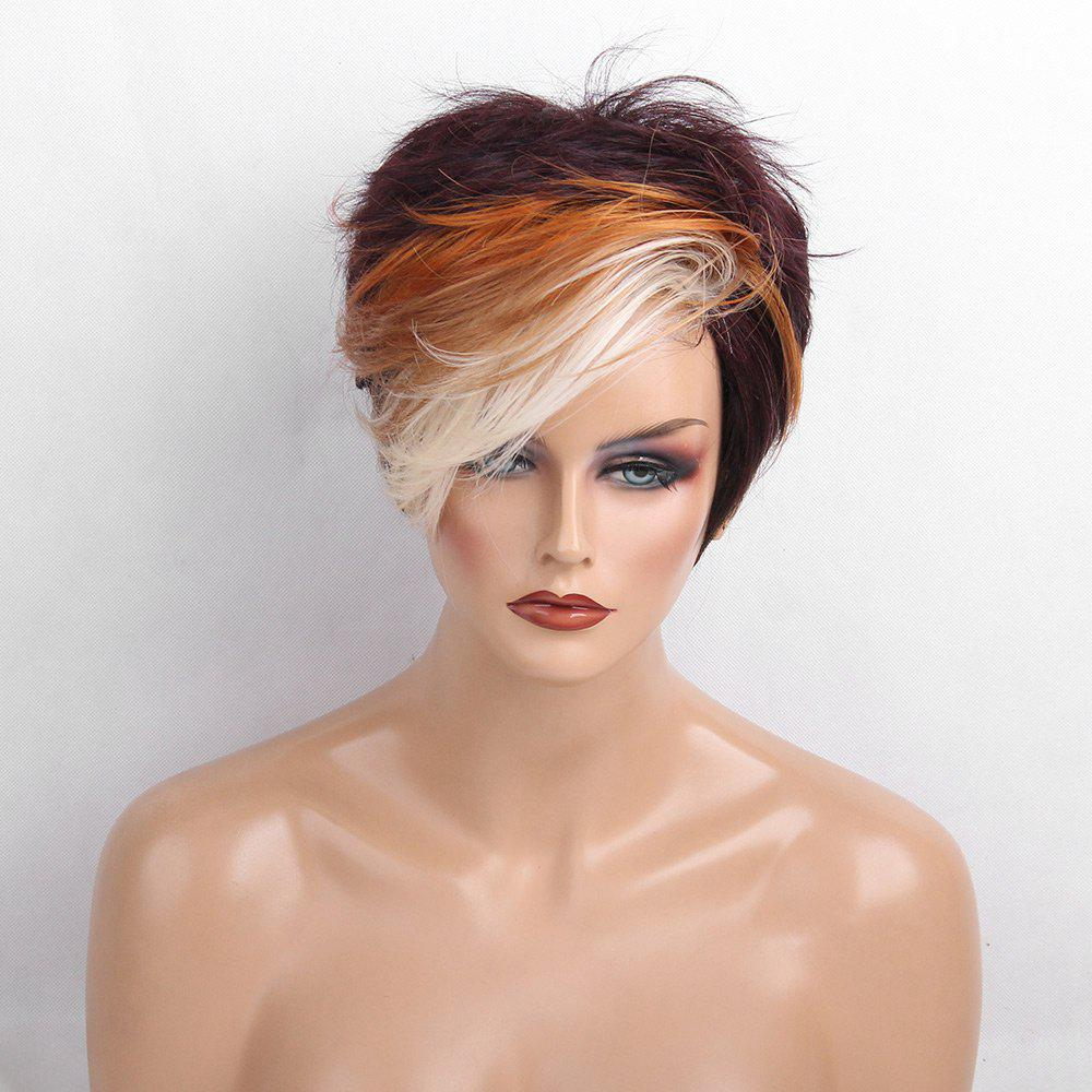 Short Colormix Side Bang Layered Fluffy Straight Human Hair Wig - COLORMIX
