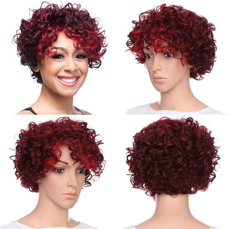 Short Inclined Bang Fluffy Curly Highlighted Synthetic Wig short pixie cut capless straight inclined bang synthetic wig