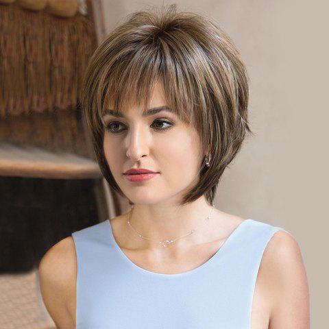 Short Inclined Bang Colormix Fluffy Straight Synthetic Wig - COLORMIX