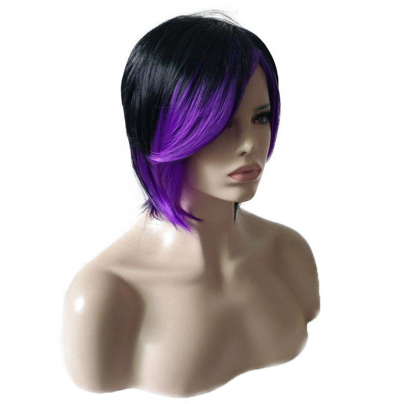 Short Inclined Fringe Colormix Straight Synthetic Wig - BLACK/PURPLE