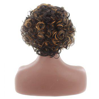 Short Colormix Center Parting Fluffy Curly Synthetic Wig -  BROWN / GOLDEN