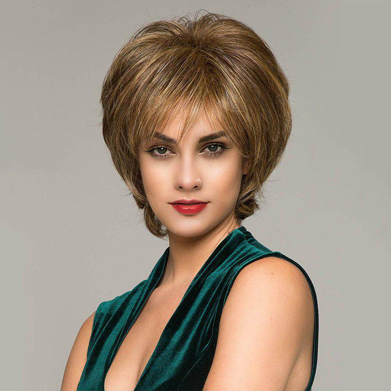 Short Inclined Bang Colormix Fluffy Natural Straight Synthetic Wig short pixie cut capless straight inclined bang synthetic wig