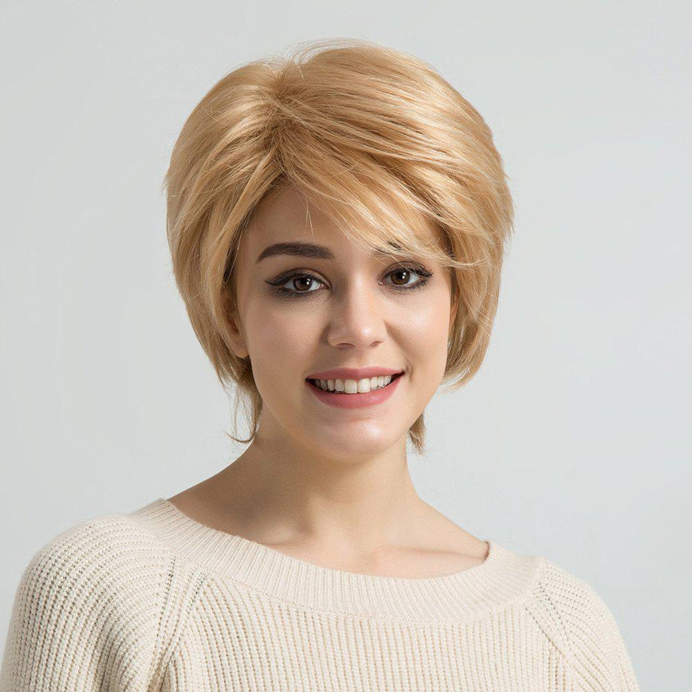 Short Oblique Bang Layered Straight Human Hair Wig - COLORMIX