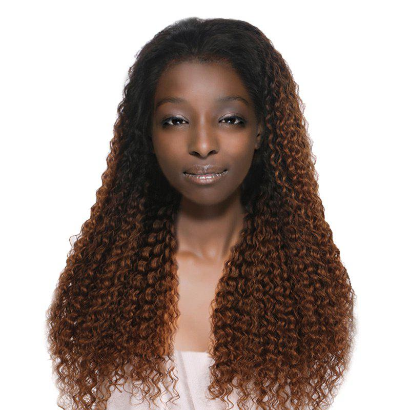 Long Free Part Fluffy Ombre Curly Wave Synthetic Lace Front Wig - GRADUAL BROWN