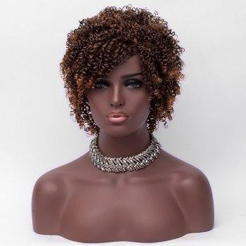 Short Side Bang Colormix Fluffy Kinky Curly Synthetic Wig - COLORMIX