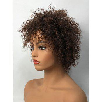 Short Oblique Bang Bouffant Curly Synthetic Fiber Wig - NUT BROWN