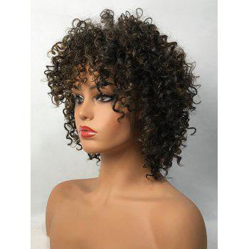Short Inclined Bang Colormix Fluffy Curly Synthetic Wig - COLORMIX