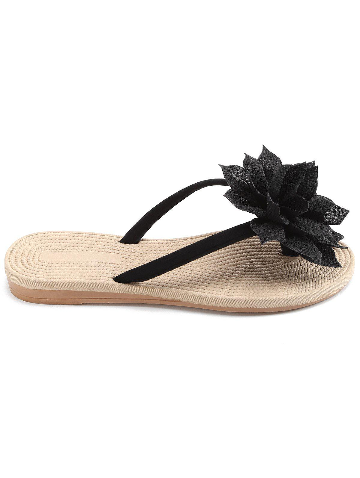 Flat Heel Flower Flip Flop for Holiday flip flop