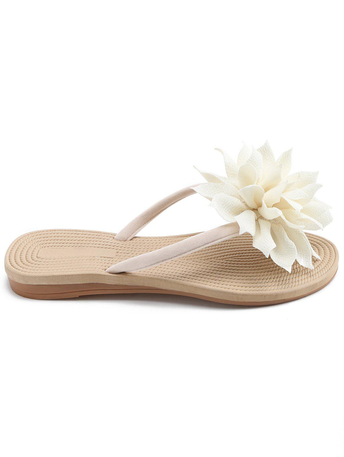 2018 flat heel flower flip flop for holiday off white in slippers flat heel flower flip flop for holiday off white 40 mightylinksfo