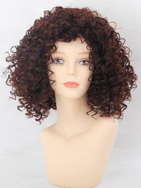 Medium Side Finge Afro Kinky Curly Colormix Synthetic Wig - multicolor