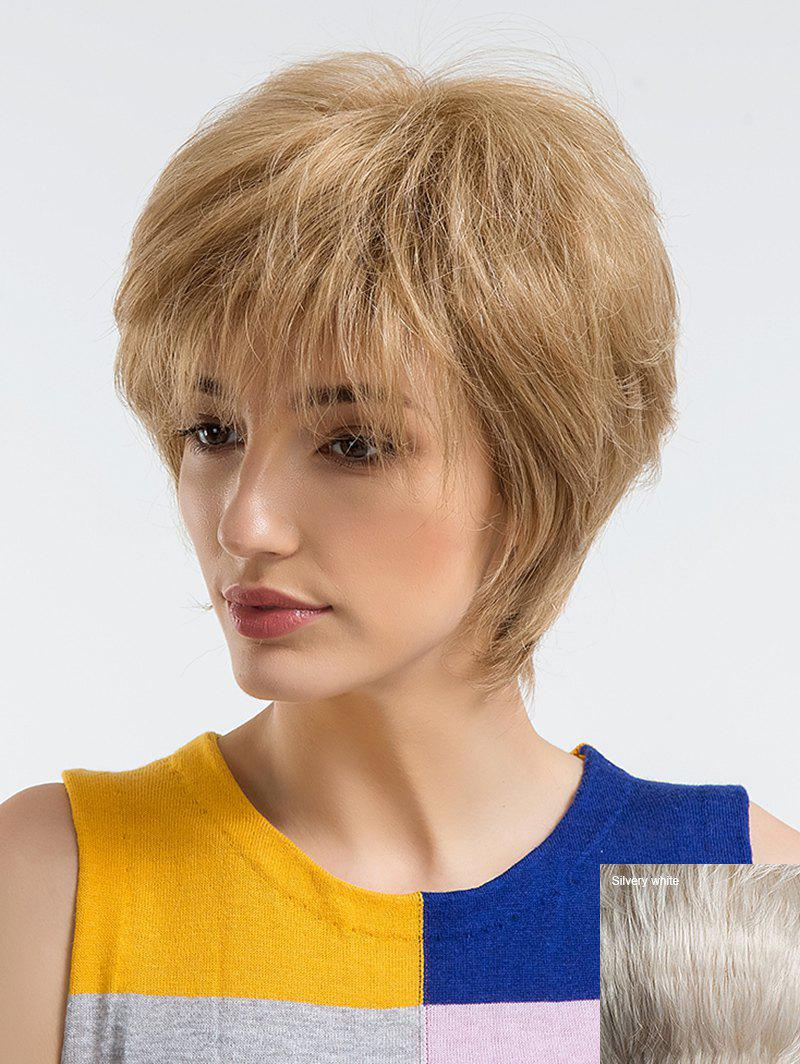 Short Incliend Bang Human Hair Straight Wig - multicolor F