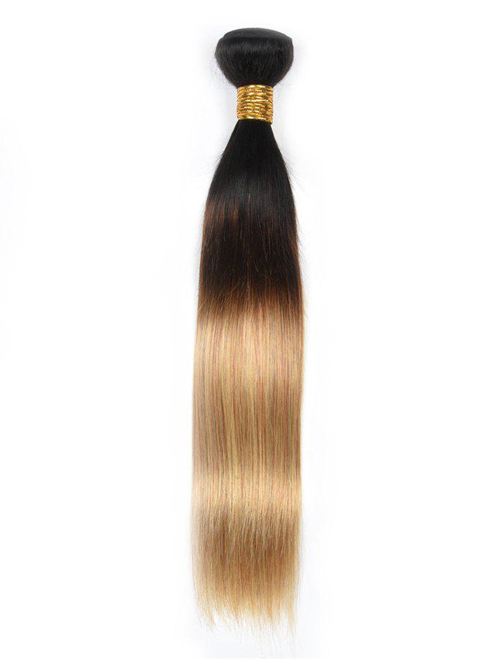 Ombre Straight Indian Human Hair Weave - multicolor 10INCH
