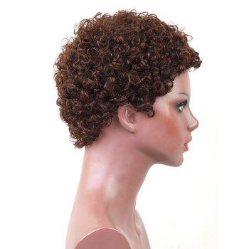 Short Pixie Afro Kinky Curly Capless Human Hair Wig - BROWN