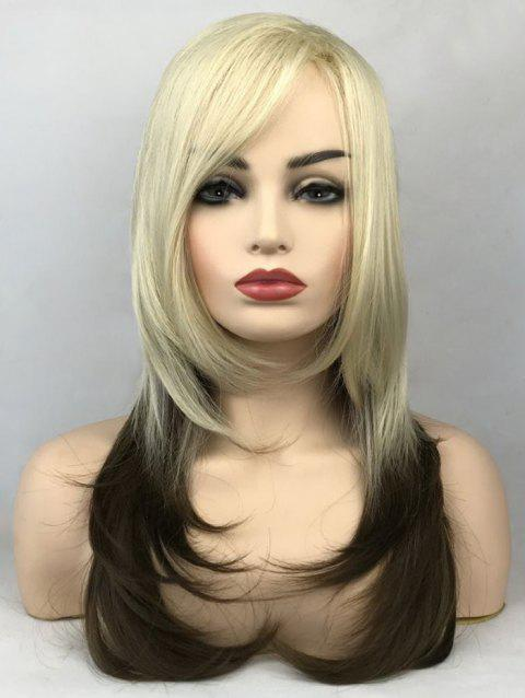 Long Side Bang Colormix Layer Straight Tail Adduction Synthetic Wig - multicolor