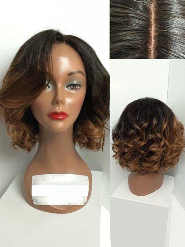 Short Side Parting Big Curly Ombre Synthetic Wig - multicolor