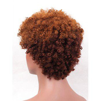 Short Side Bang Colormix Fluffy Curly Synthetic Wig - multicolor