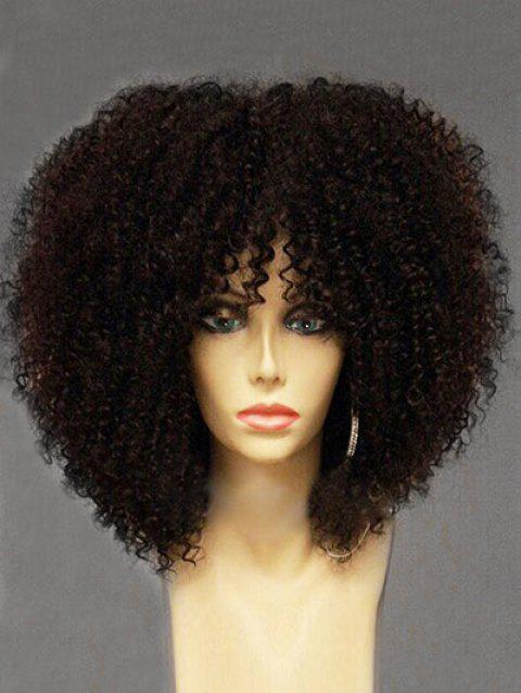 Long Inclined Bang Fluffy Afro Curly Synthetic Wig - BLACK