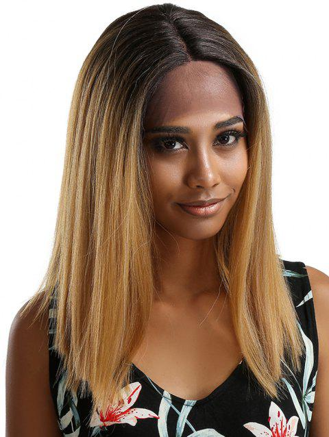 Medium Center Parting Ombre Straight Party Synthetic Lace Front Wig - multicolor B