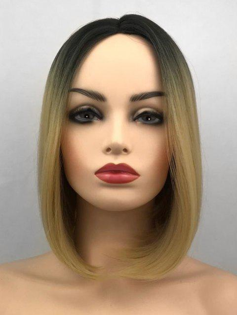 Middle Part Ombre Short Straight Bob Synthetic Wig - multicolor G