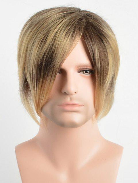 Short Capless Side Bang Layer Straight Synthetic Wig - multicolor