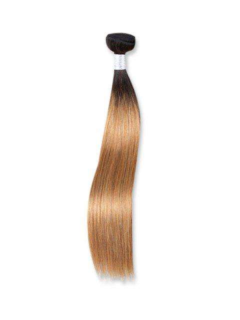 Straight Ombre Natural Human Hair Weft - multicolor B 18INCH