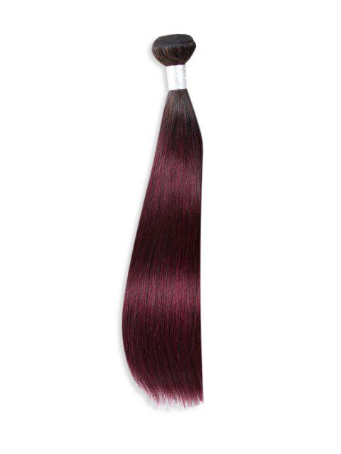Natural Straight Ombre Human Hair Weft - multicolor B 24INCH