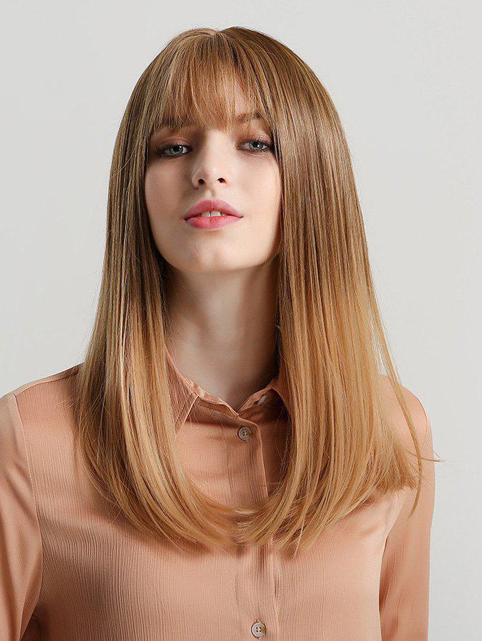 Synthetic Neat Bang Long Straight Wig - multicolor