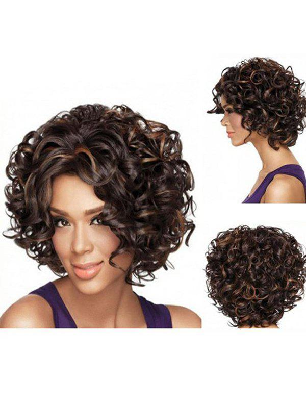 Short Fluffy Curly Heat Resistant Fiber Synthetic Wig - BROWN BEAR JS-226
