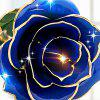 Valentine's Day Gift 24K Gold Plated Paint Rose - BLUE