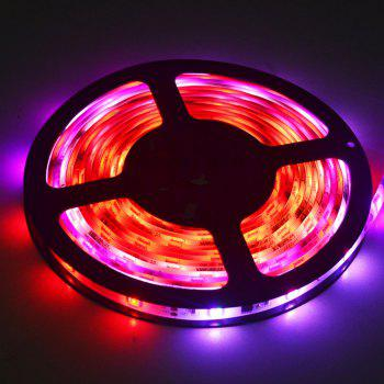 Waterproof ic2811 Led Strip Light 5M/ Roll Full Color Changing Lights - COLOR