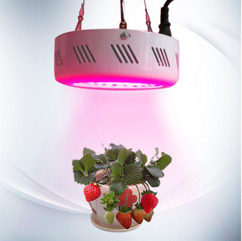 Youoklight 1PCS 90W Ac100 - 265V Led Red + Red Light Miracle Plant Growing Bulb - WHITE UK