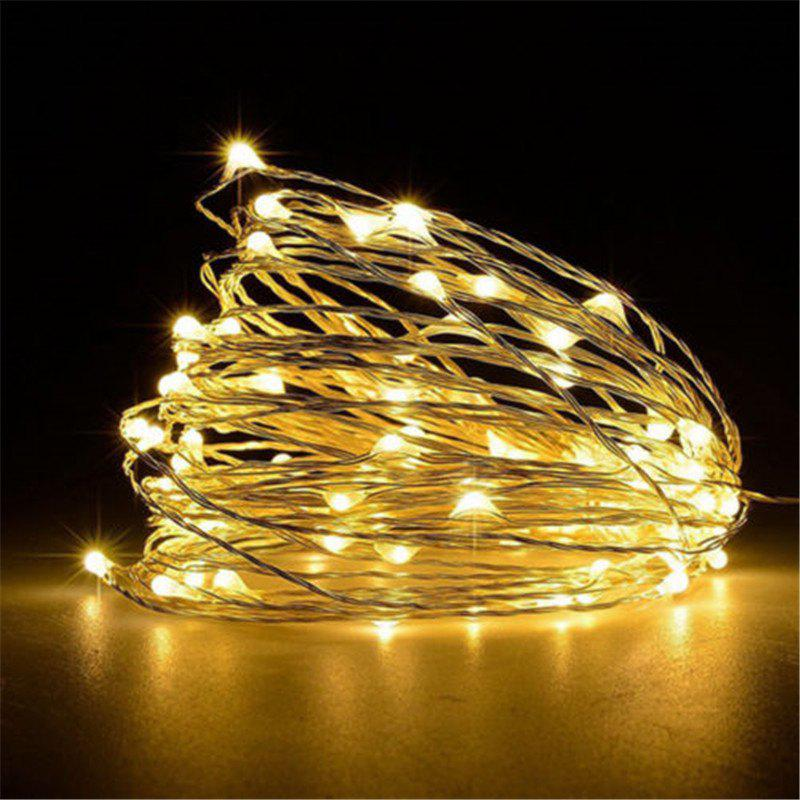 Supli 5M 50 LEDs USB Multi Colors Holiday String Lights Lamp Copper Wire Home Lighting - WARM WHITE LIGHT