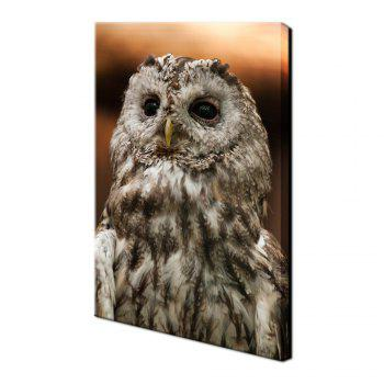 Yhhp 1 Panels Animal Owl picture Print Modern Wall Art On Canvas Unframed - COLORMIX 16 X 24 INCH (40CM X 60CM)