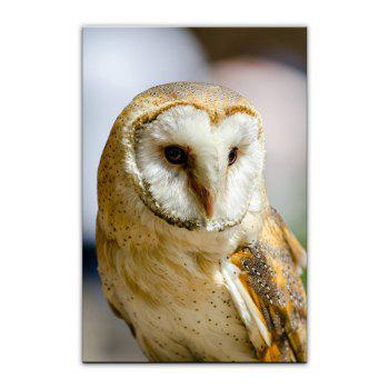 Yhhp Owl Picture Print Modern Wall Art On Canvas Unframed - DAISY 16 X 24 INCH (40CM X 60CM)