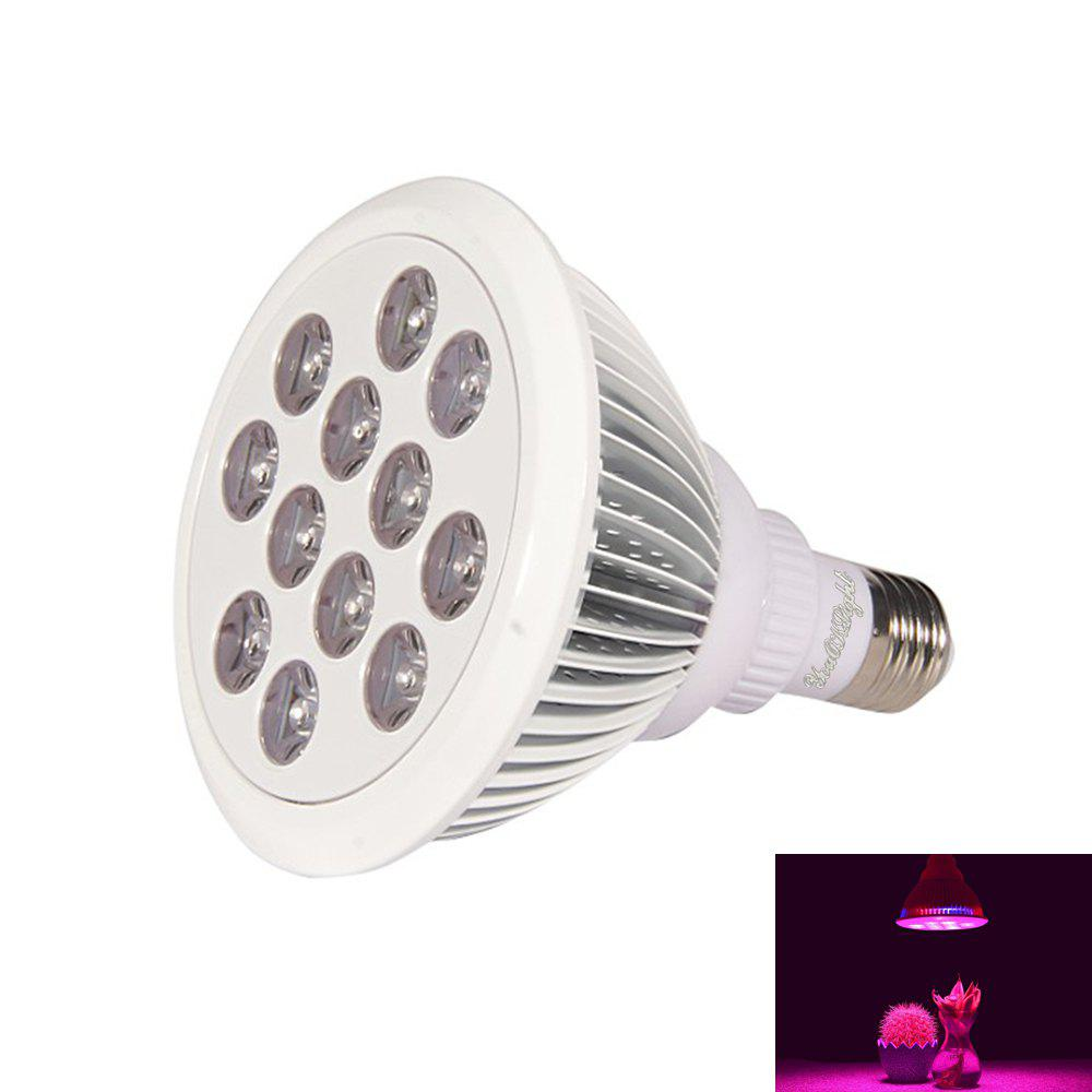 Youoklight 1PCS E27 24W Ac 85 - 265V 12LED Ip55 Plant Grow Light - Blanc / Argent