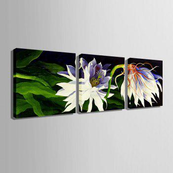 Yc Special Design Frameless Paintings White Flowers of 3 - 20 X 20 INCH (50CM X 50CM) 20 X 20 INCH (50CM X 50CM)