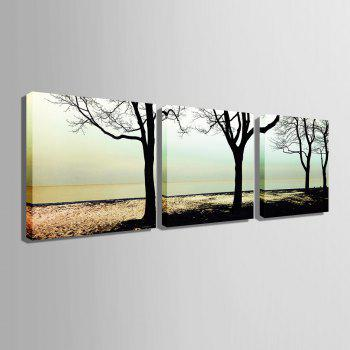 Yc Special Design Frameless Paintings shade of 3 - WHITE/BLACK WHITE/BLACK